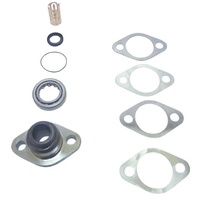 Top Swivel Pin Kit with ABS 1999-2016 - TAR100050
