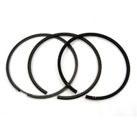 Piston Ring Set  Standard size 300 + 200 TDi